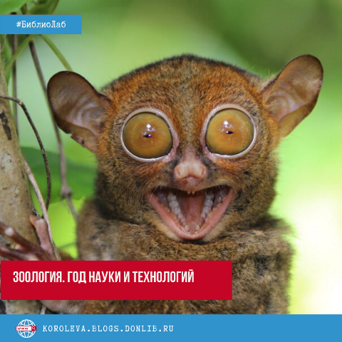 #Библиолаб: Зоология